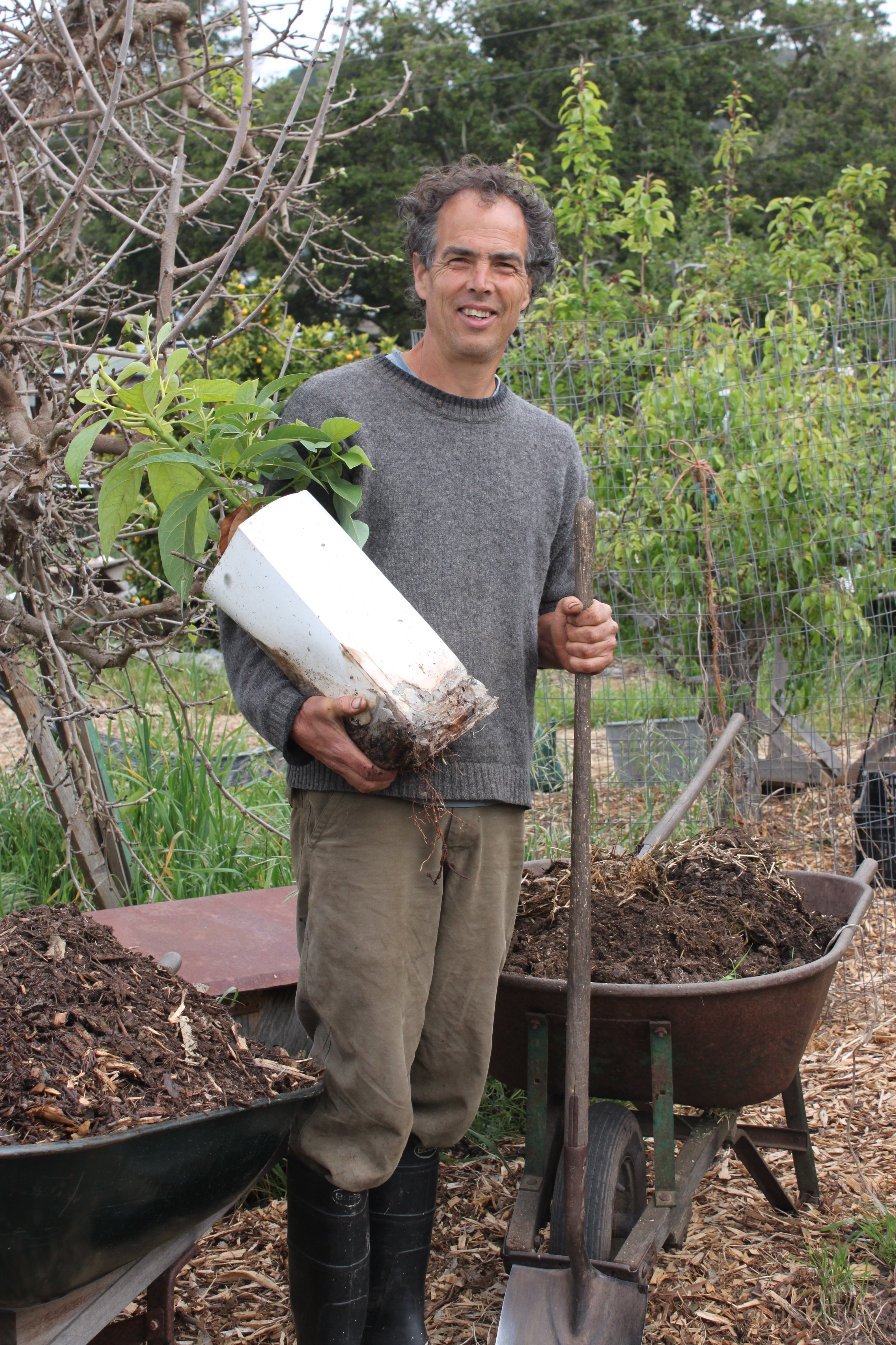 fertilizer is necessary essay Related documents: black: oxygen and organic nitrogen fertilizer essay ibuprofen: oxygen and small organic compound essay ibuprofen is also known as: brufen, motrin, dolgit, liptan, nuprin, and butylenin.