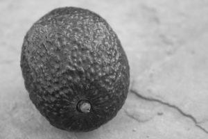 Phoenix Avocado